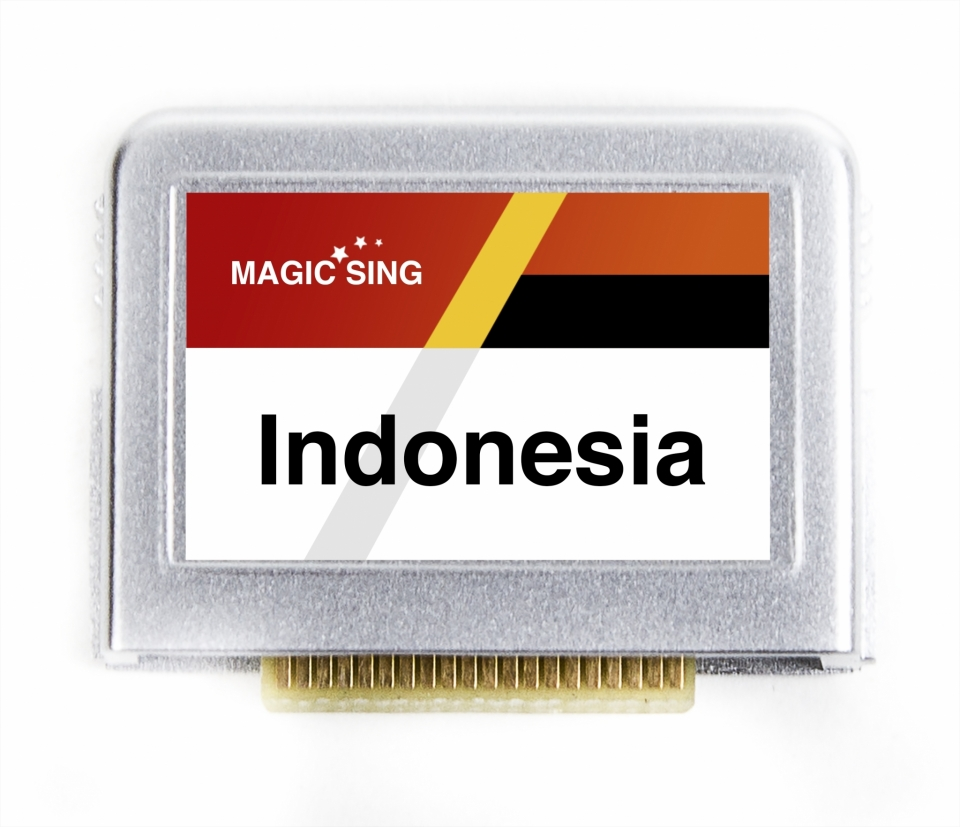 Indonesia Vol.2 (Indonesian) 250 songs