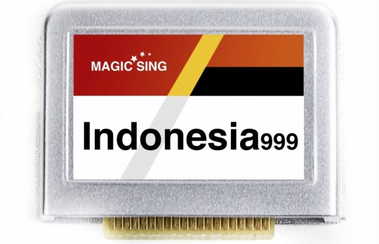 Indonesia999 Vol.1 (Indonesian) 999 songs